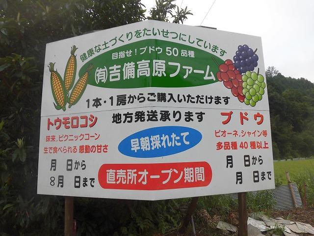 この土日で本年度のブドウの直売は終了です。