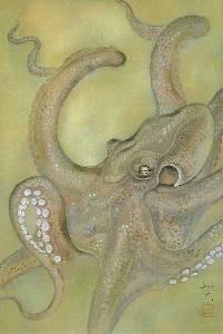 「夜想蛸之図」