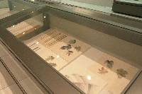 「日本画-和紙の魅力を探る」徳島県立近代美術館の展示の様子2